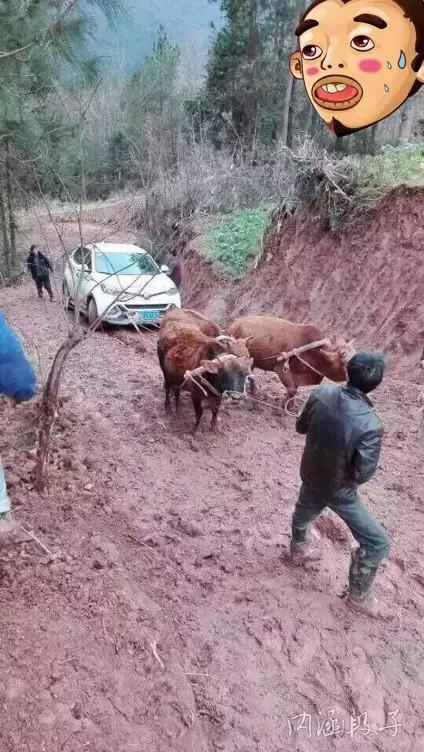 内涵图:车到山前必有路,有路还得用家畜