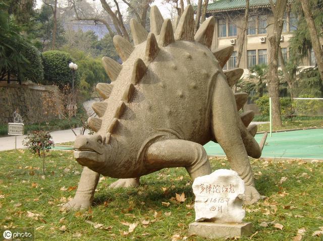 中国百年十大恐龙——小盗龙