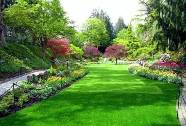 園林綠化的重要性