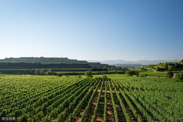 7种国外观光农业的经营模式值得借鉴