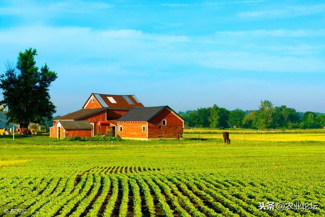 六步完成生态农庄规划功能分区