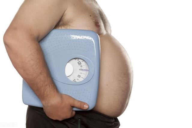 一斤肉和一斤脂肪图片