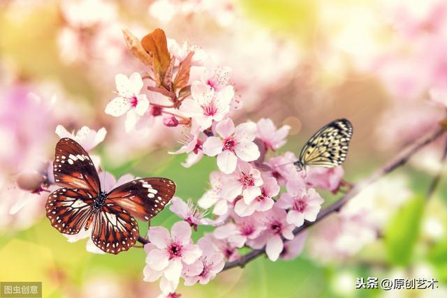 《春》课文原文_瑞文网
