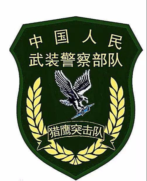 猎鹰1949赵雅琴剧照