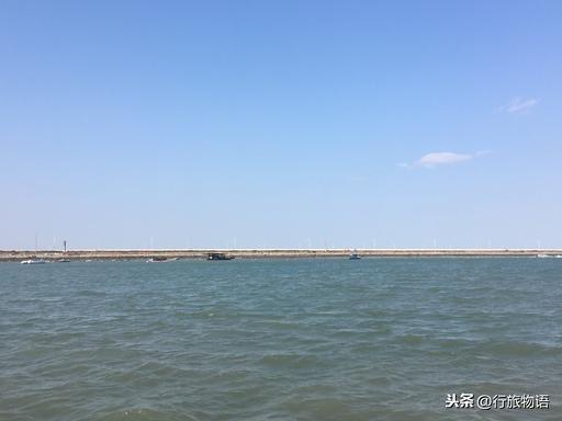 连云港荷兰花海