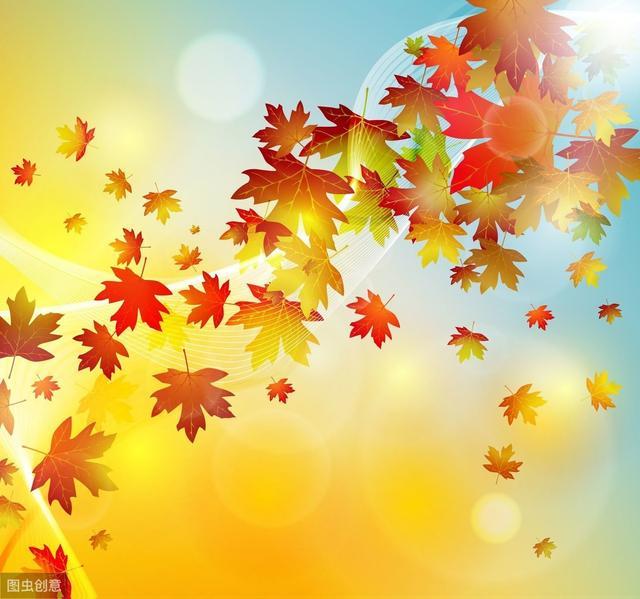 写秋天的作文加一幅图