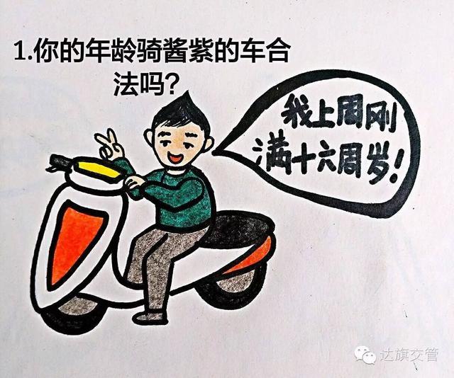 【踏板48cc燃油助力车】踏板48cc燃油助力车哪款好... - 京东优评
