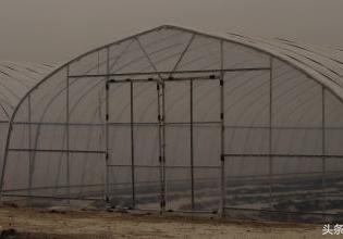 建一个钢架蔬菜大棚一亩投入一万八算多不?咱们一起来算算