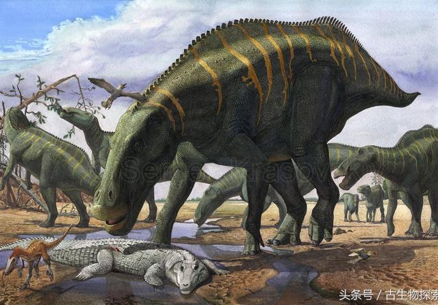 其实中国也有非常厉害的恐龙!_网易新闻