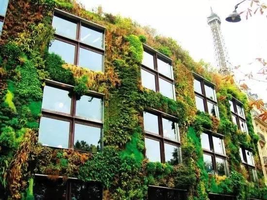 立体绿化景观设计,为城市装饰新生