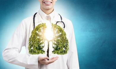 补肺最强十种食物