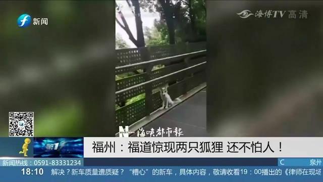福道公园_鼓楼名片_福州市鼓楼区政府