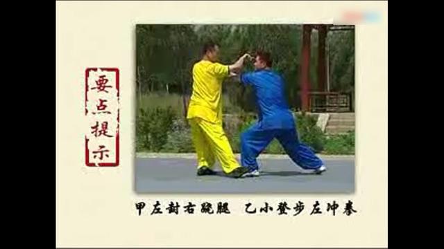 螳螂拳小说