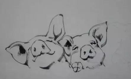 猪画法技巧,名人字画猪的画法_可可简笔画