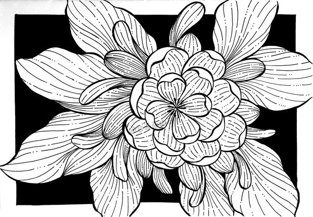 9种植物简笔画,超简单,一学就会,还能教孩子认植物