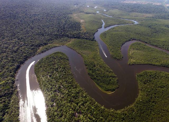 Tại sao không ai dám xây cầu bắc qua sông Amazon?