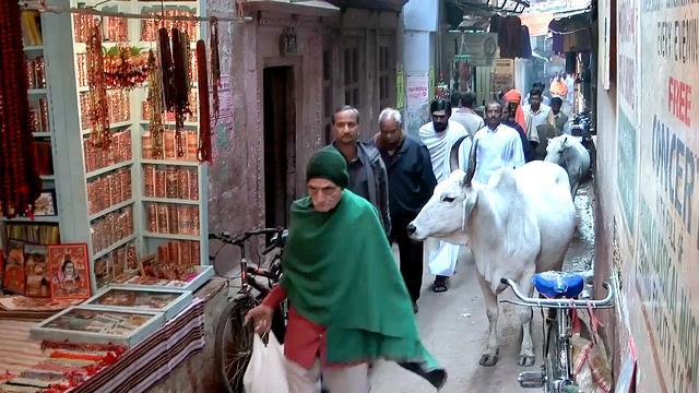 中国游客来到印度,实拍印度的居民小区,看看生活环境怎么样?