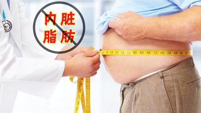 内脏脂肪图片对比