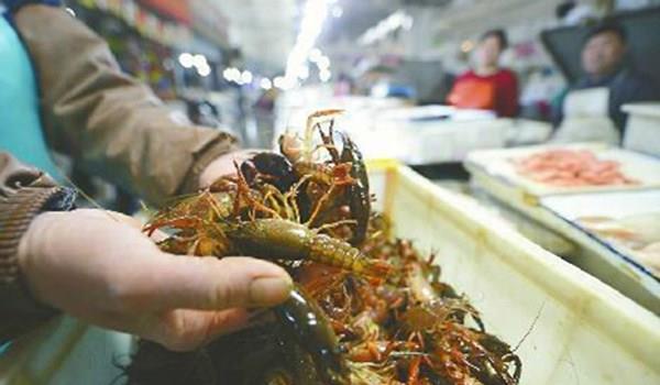"""""""青虾""""和""""红虾""""哪种才新鲜的?很多人总弄混,难怪... _腾讯网"""