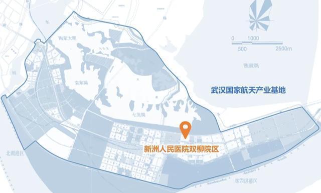 新洲第一座三甲医院选址敲定,本月开建