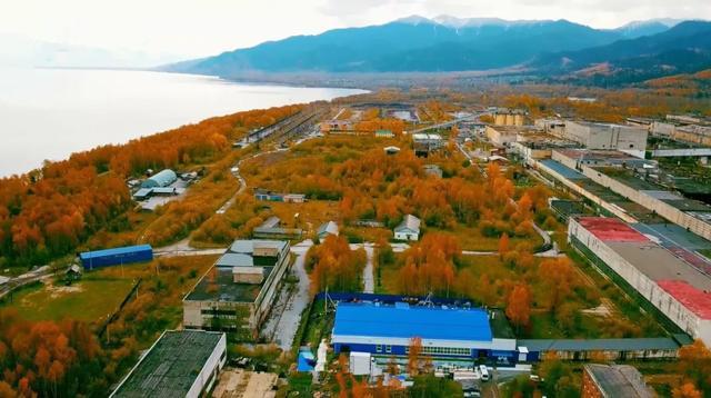 毗邻贝加尔湖、掌握原料资源,中俄企业打造高品质白桦茸原产地