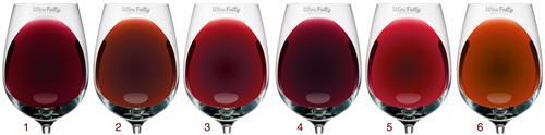 葡萄酒知识——了解葡萄酒的基本分类