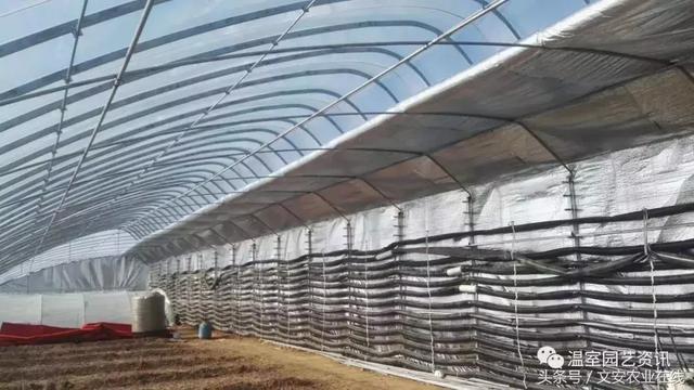 冬暖式日光温室大棚造价与结构比较-北方温室大棚