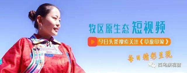 蒙古丽人蒙古袍图片