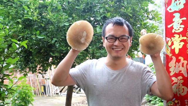 可爱蘑菇图片
