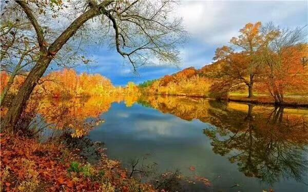 描写秋天优美段落