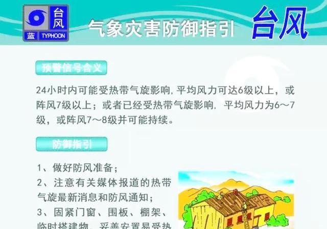 广东哪年台风最大