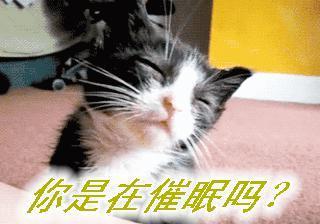 再睡一会儿带字表情包|再睡一会儿搞笑图片... -乐游网手机下载站