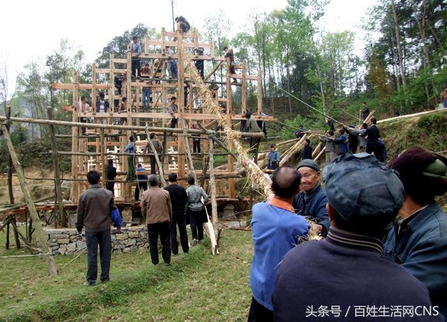 贵州中草药图片大全