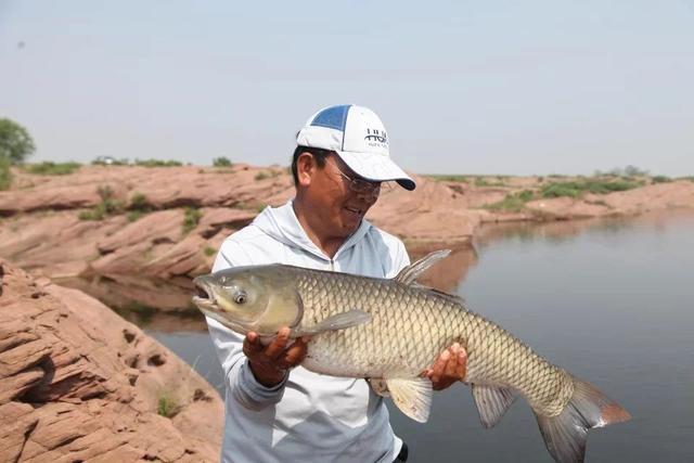 五米四手竿钓获二十一斤大草鱼[图文日记] - 钓鱼人