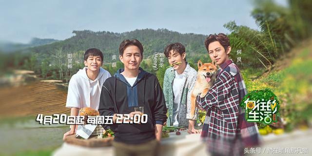 芒果台将在暑假推出三档新综艺,网友:终于有一部是原创的了