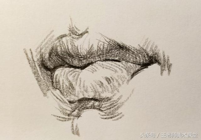 人的嘴巴怎样画_可可