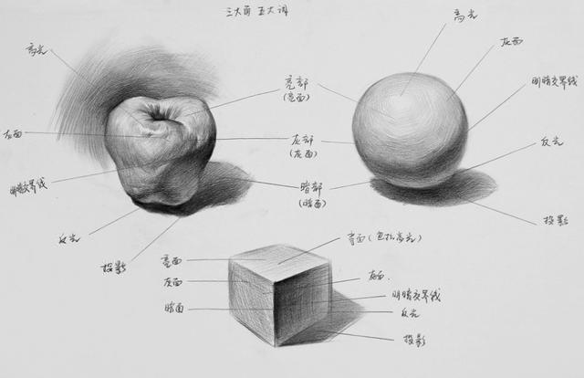 三大面五大调子讲解图