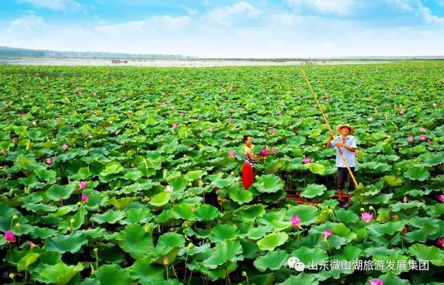 微山湖美景摄影图__风景名胜_自然景观_摄影图库_昵图网nipic.com