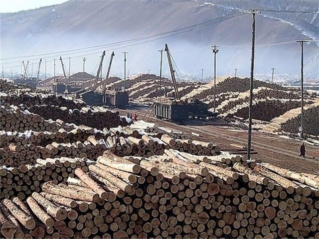 方木批發價格