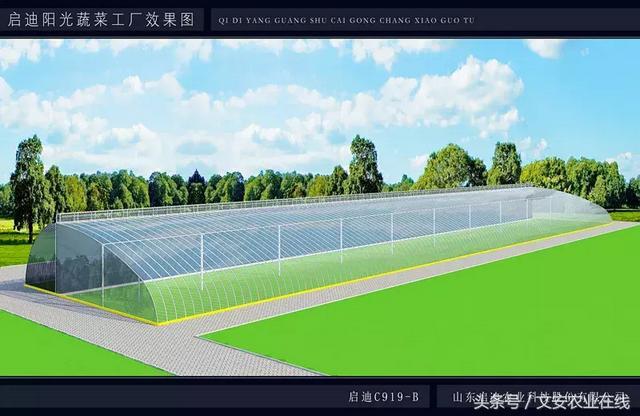 一种新型冬暖式温室——启迪农科C919-B型温室设计方案