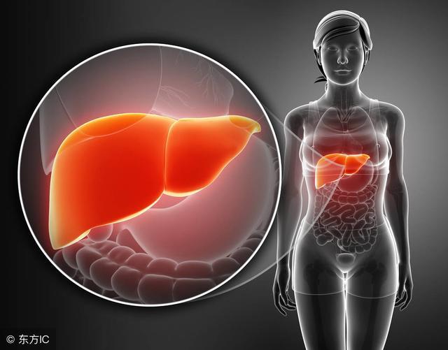 吃什么对肝脏好?全给您列举了,看看吧