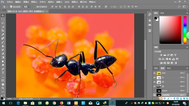 photoshop,ps钢笔路径如何快速的描边_360新知