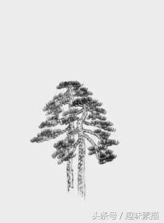 树干的速写画法解析(风景速写技法) - 来绘画网