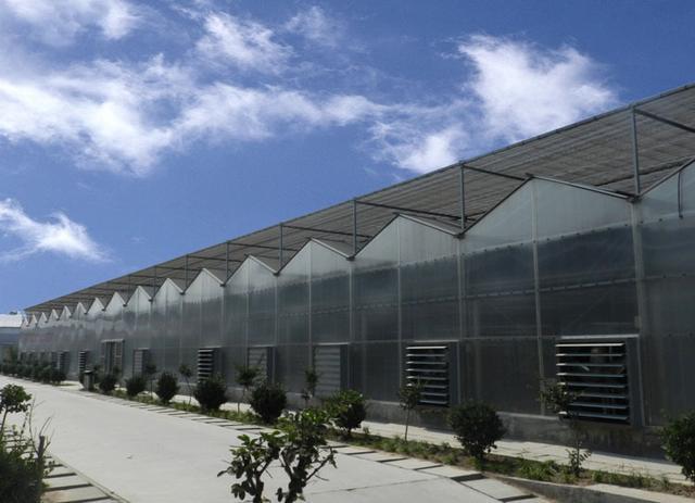 PC阳光板温室大棚建设造价多少?建造明细已发送,请注意查收