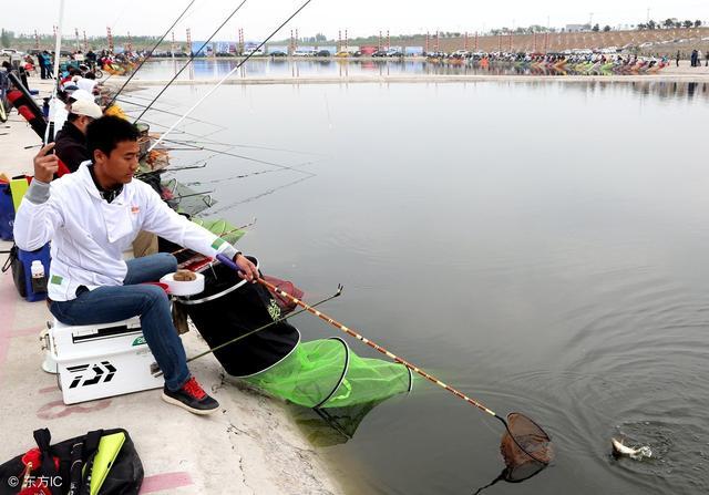 鱼出水瞬间图片