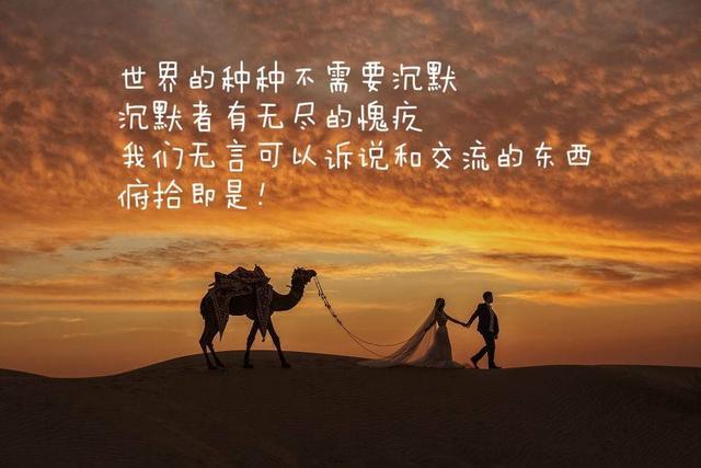 关于爱情的名言大全_高考升学网