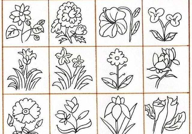 144例黑白简笔画植物素材合集~