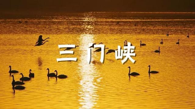 河南三门峡元宵的照片