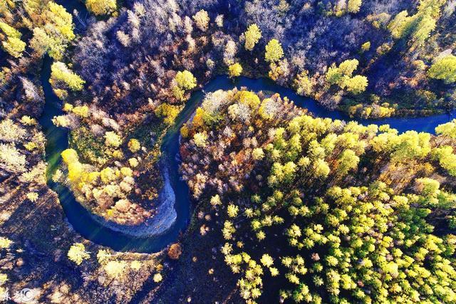 黑龙江:航拍大兴安岭林区风光,森林云雾、山林云海!