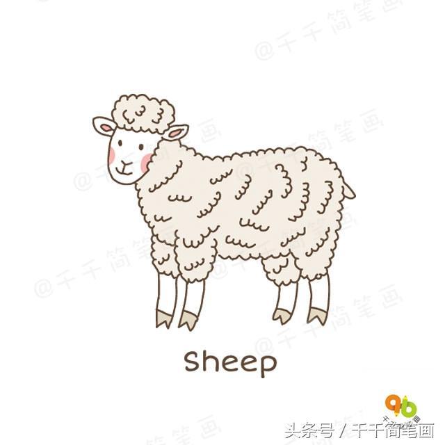 小羊简笔画可爱
